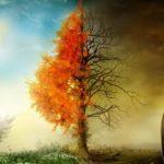 زردشتیگری؛ توحیدی یا ثنوی؟ (۲۴ص)