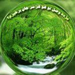 اعتقاد به منجی، بر اساس «ضمیر ناخودآگاه جمعی» یونگ؛ با بررسی اسطورۀ کهن سیمرغ و تبیین اسطورۀ مدرن بشقابپرنده