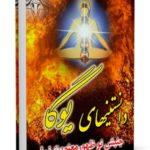 دانلود کتاب: دانستنی های یوگا ( جنبش نوظهور معنویت نما ) (۶۷ص)